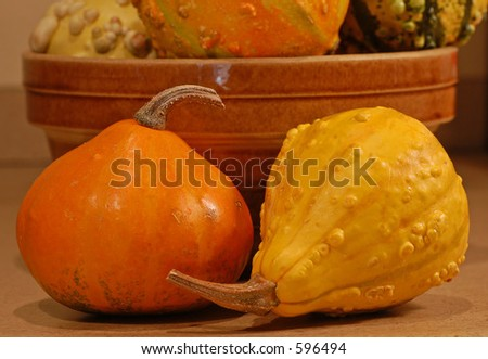 Bowl of Gourds