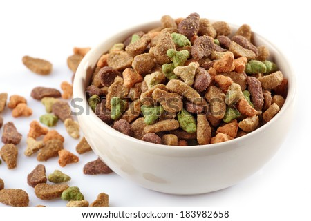bowl of pets food on a white background - stock photo