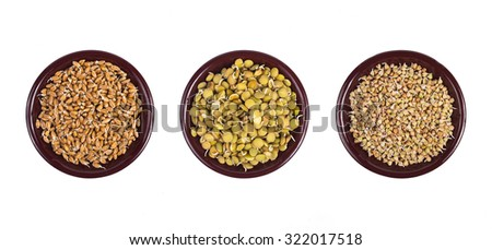 Bowl of sprouted wheat, bowl of sprouted lentil and bowl of sprouted buckwheat isolated on white background - stock photo
