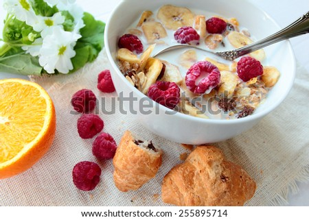 Bowl with cereals with raspberry and banana chips - stock photo