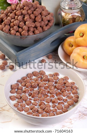 Bowl with chocolate cereals and milk - stock photo