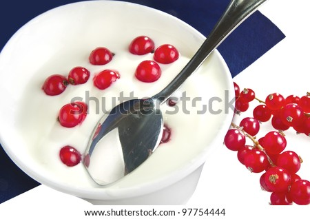 Bowl with Fresh yoghurt and redcurrant