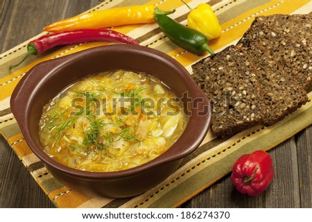 Bowl with  traditional Russian cabbage soup  - stock photo