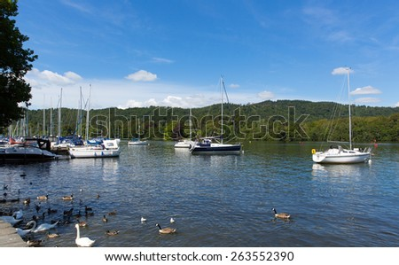Bowness on Windermere The Lakes Cumbria UK on a beautiful summer day with ducks birds blue sky and sailing boats - stock photo