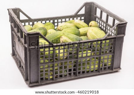 Box full with fresh cucumbers over white background