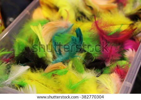 Box with colorful feathers