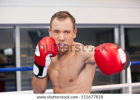 Boxer. Confident young boxer on the boxing ring - stock photo