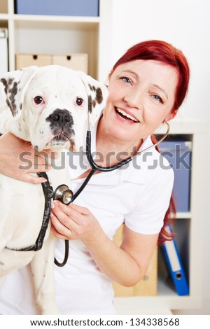 Boxer dog at the happy veterinarian with stethoscope - stock photo