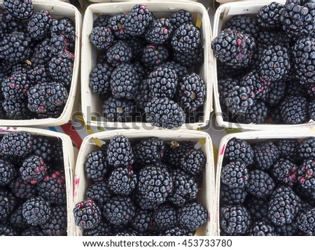Boxes of blackberries at local farm market. - stock photo