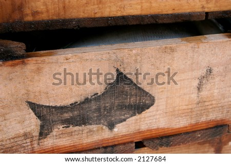 Boxes of fish