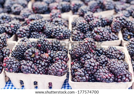 Boxes of organic blackberries for sale at local farmers market. - stock photo