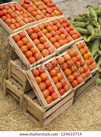 boxes of tomatoes, ripe and tasty fruits and vegetables at fair - stock photo