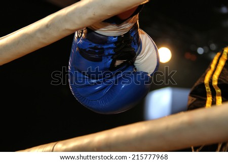 Boxing gloves during a professional boxing match - stock photo
