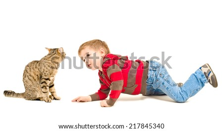 Boy and cat looking at each other isolated on white background - stock photo