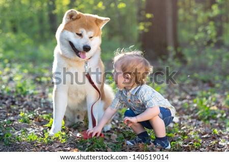 Boy and dog - stock photo