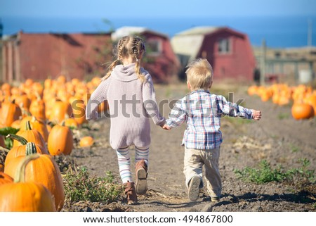Boy and girl running to choose a pumpkin at the farm