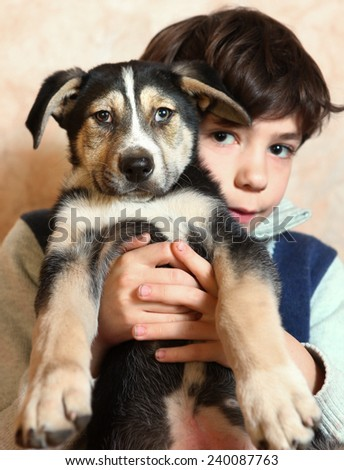 boy and little puppy look to each other