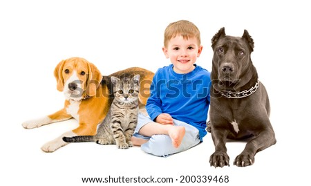 Boy, cat and two dogs sitting together - stock photo