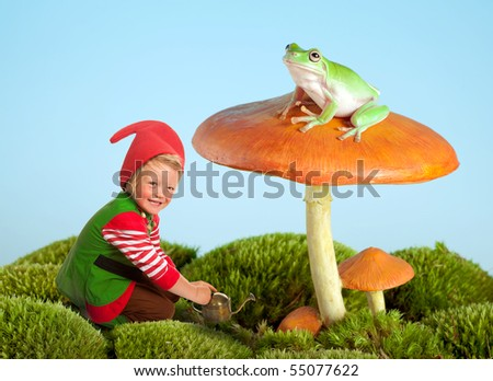 Boy dressed as a garden gnome and a frog on a toadstool as in a fairytale - stock photo