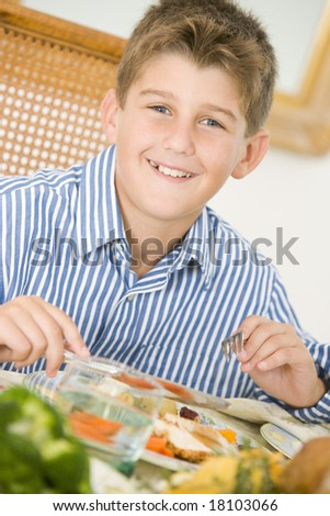 boy eating christmas meal - stock photo