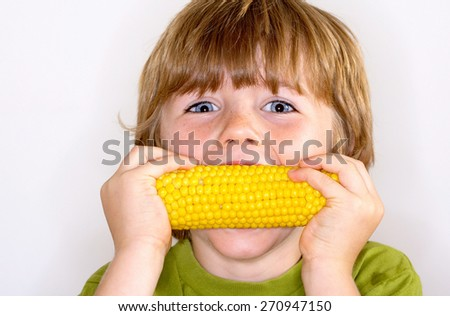 boy eating young corn - stock photo