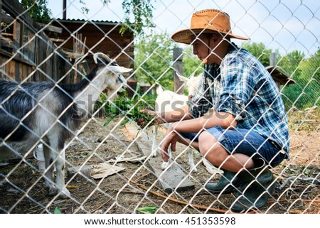 Boy feeding the goat fresh grass in the village