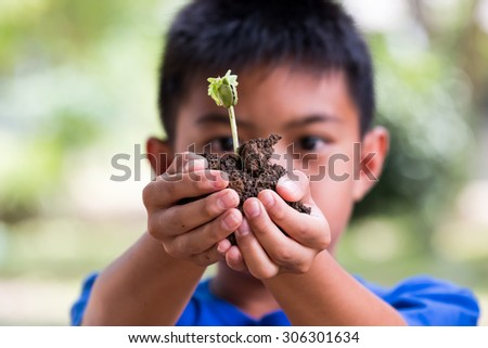 boy hand holding  fresh young plant for you help protect from global warming .Symbol of new life and environmental conservation