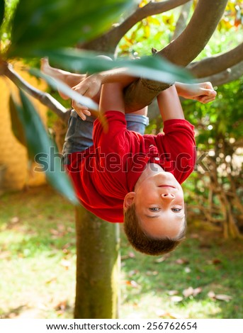 Boy hanging from a tree branch in a summer garden - stock photo