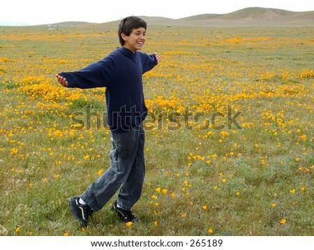 Boy having fun in poppy field - stock photo