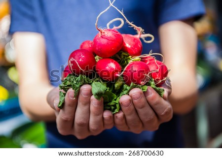 Boy holding fresh vegetables from the harvest - stock photo