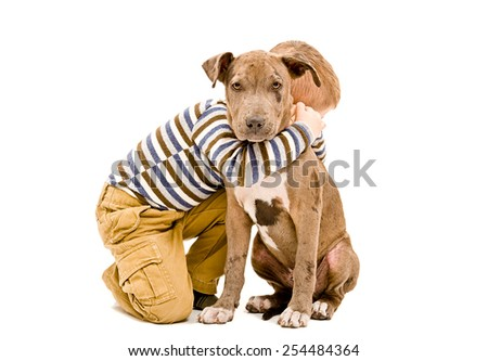 Boy hugging a puppy pit bull isolated on white background - stock photo