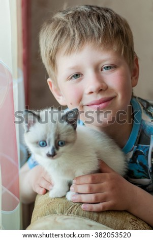 boy hugging white kitten with blue eyes in the room