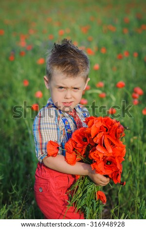 boy in poppy field with a large bouquet of red poppies. Little Child Boy Giving Flowers Bouquet, Handsome Kid Greeting Red poppies Bunch, Retro Style Celebration, Looking at Camera