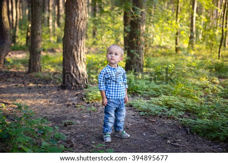 Boy in summer forest.