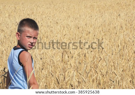 Boy in wheat field under sky sun light - stock photo