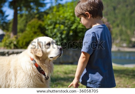 boy looking at dog at day time