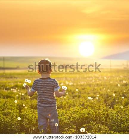 boy on a field - stock photo