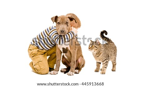 Boy, pit bull puppy and cat isolated on white background - stock photo