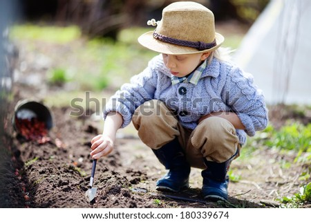Boy planting onion seeds in vegetable beds