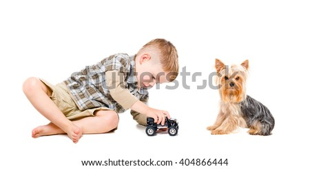Boy playing toy car together with Yorkshire terrier isolated on white background