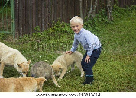 Boy playing with four dogs in the forest - stock photo