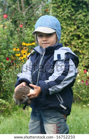 Boy playing with hedgehog