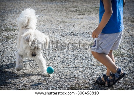 Boy plays with his dog - stock photo