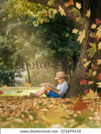 Boy reading under the big linden tree - stock photo