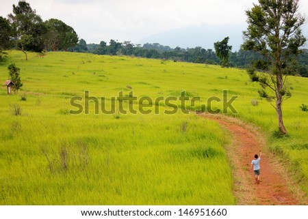 Boy say goodbye and walk away to the nature - stock photo