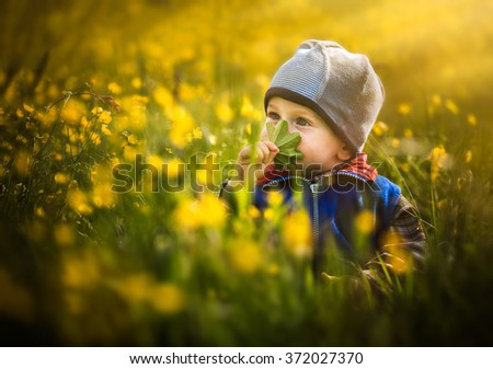 Boy sitting and playing on field of yellow flowers. Spring baby portrait.