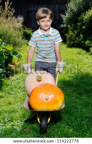 boy standing with big yellow pumpkin in hands - stock photo