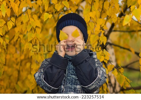 boy with autumn leaves - stock photo