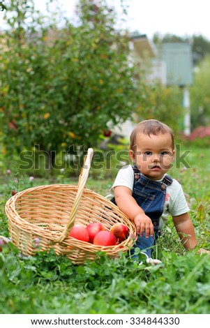 Boy with basket at apple