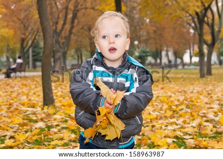 Boy with colorful leaves in the autumn park